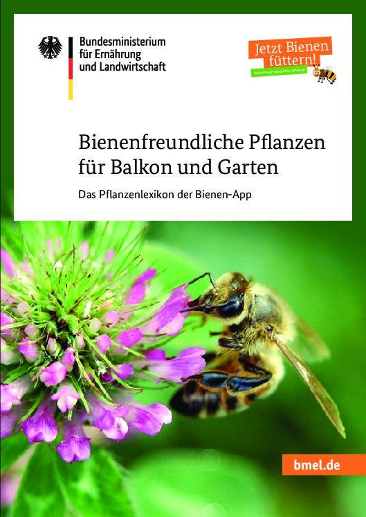 Umweltfreundlich, nachhaltig Grünabfälle entsorgen, bienenfreundlich neu anpflanzen