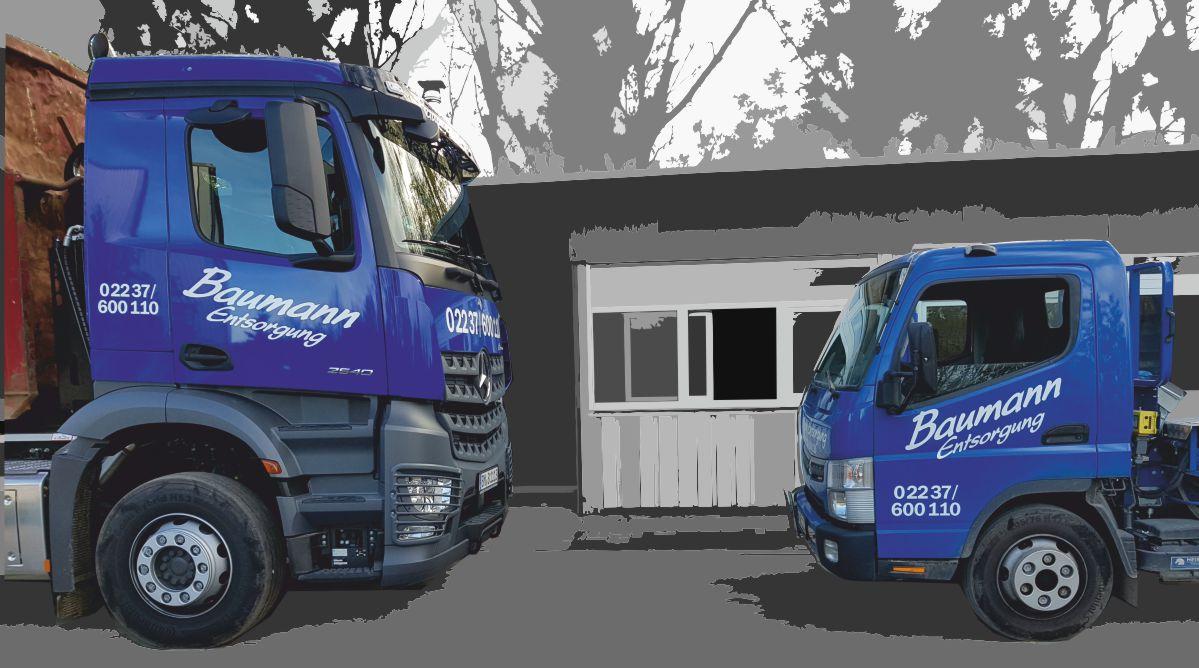 günstiger Containerdienst für Bauschutt, Grünabfälle, Holz und Mischabfall